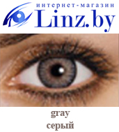 freshlook colorblends gray linz