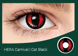ЭРА карнавал черная кошка