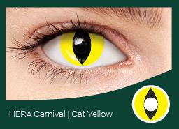 ЭРА карнавал желтая кошка